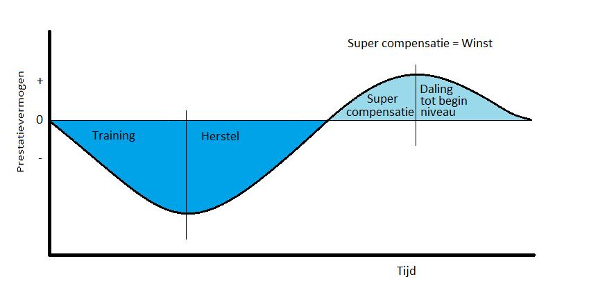 Het proces van supercompensatie